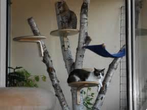kratzbaum balkon katzengerechter balkon