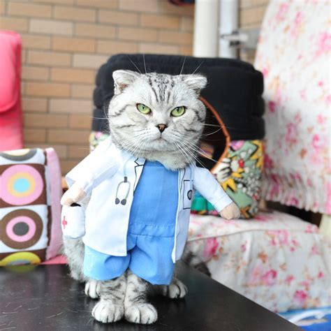 cheap cat doctor costume