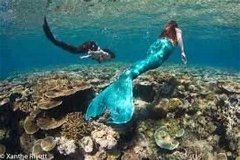 great barrier reef underwater hotel google search