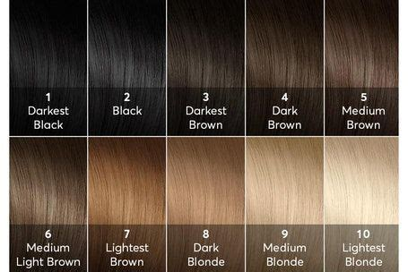 Hair Shade Guide by Hair Color Levels Chart Hair I Hair Color Names