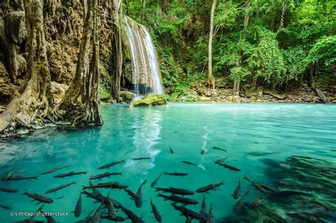 Kanchanaburi Private Tour From Bkk Erawan Waterfall