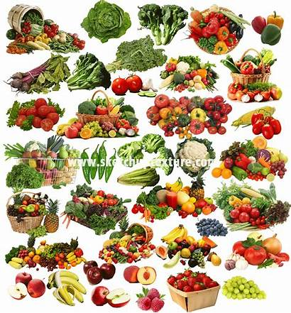 Vegetables Fruits Cut Pack Sketchup Texture Trees