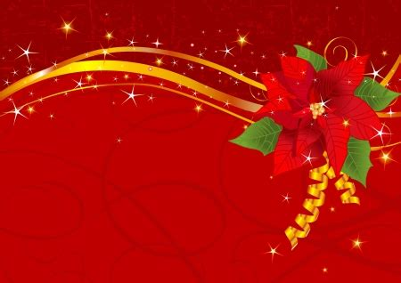 poinsettia   cg abstract background wallpapers
