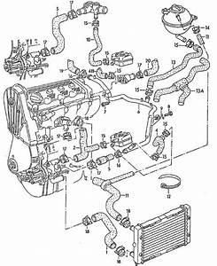 2000 Volkswagen Golf Engine Diagram