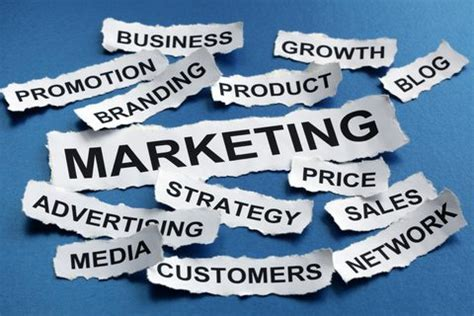 marketing degree courses best bachelor s in marketing degree programs