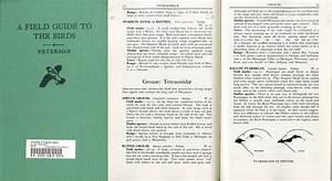 Peterson Birds Field Guide