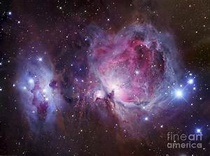 M42, The Orion Nebula Top, And Ngc by Robert Gendler