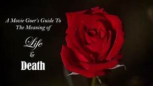 Guide To American Beauty  Life And Death
