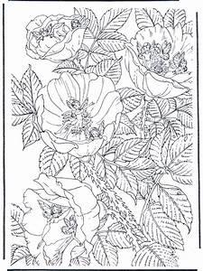 elfi 15 disegni da colorare per adulti e ragazzi