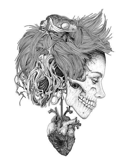 Skull Drawings By Tavo Montanez  The Skull Appreciaton
