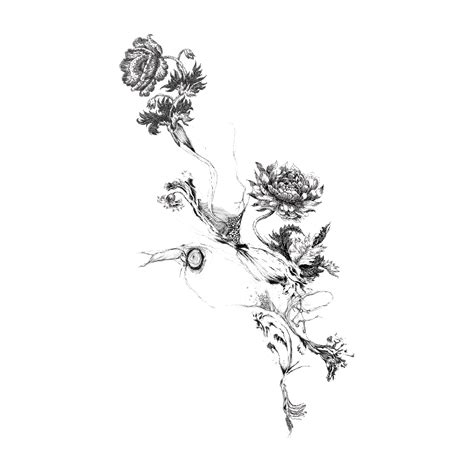 Tattoo Birth flower - Flower Tattoo Png Picture png ...