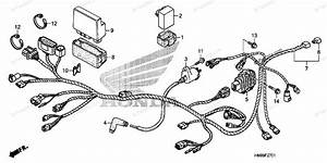 Honda Atv 2012 Oem Parts Diagram For Wire Harness  Trx250te