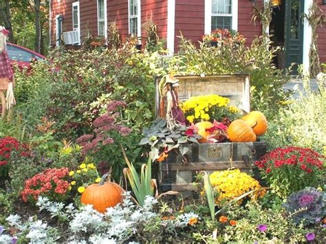 fall flower garden hd pic home landscaping