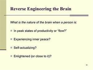 Buddha U0026 39 S Brain  The Practical Neuroscience Of Happiness