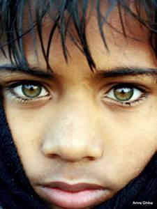 Yeux Verts Rares : les plus beaux yeux du monde les meilleurs blagues au ~ Nature-et-papiers.com Idées de Décoration