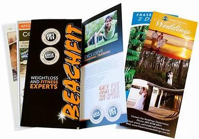 Printing Brochure Brochures Flyers Fold Tri Vegas
