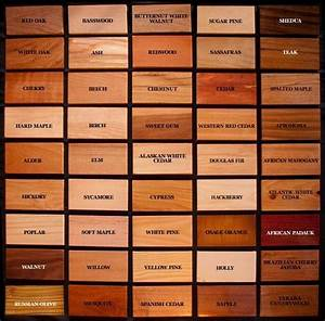 How to tell the type of wood Wood Pinterest To tell