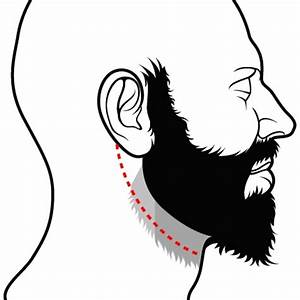 Comment Tailler Les Orchidées Pour Qu Elles Refleurissent : comment bien tailler sa barbe ~ Melissatoandfro.com Idées de Décoration