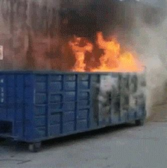 True Story Behind the 2016 Election Dumpster Fire