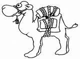 Camel Coloring Pages Cartoon Camels Drawing Gambar Mewarnai Line Printable Drawn Getdrawings Pencil Popular Sheets Getcolorings Unta sketch template