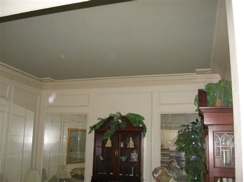 painting tray ceiling a different color panels paint