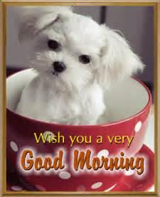 Cute Good Morning