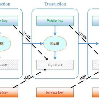 A transaction typically references previous transaction outputs as new transaction inputs and dedicates all input bitcoin values to new outputs. The structure of transaction in a Bitcoin blockchain | Download Scientific Diagram