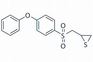 SB-3CT | MMP inhibitor | Read Reviews & Product Use Citations