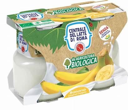 Yogurt Bio Intero Banana Alla Albicocca Agricoltura