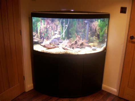 fluval venezia 350 fluval venezia 350 corner aquarium with black stand at aquarist classifieds