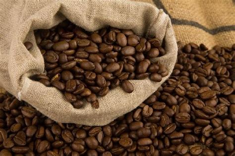Coffee grown in the hills of chikmagalur is roasted using traditional italian techniques to produce exquisite gourmet coffees assured to elevate the senses. Arabica Coffee Beans Manufacturer & Exporters from ...
