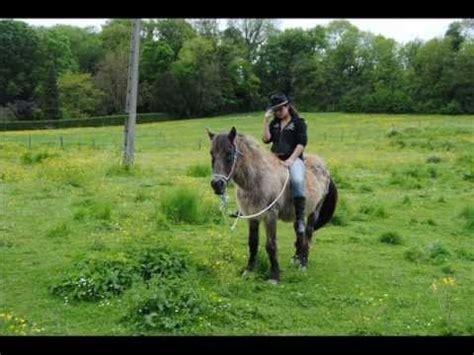 mon bureau et moi mon cheval et moi une histoire sans fin