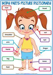 body parts esl printable worksheets  exercises