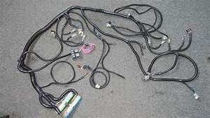 Ls1  5 3l  6 0l Engine Wiring Harness And Pcm Stand