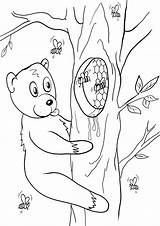 Honey Coloring Pages Honey2 Coloringway sketch template