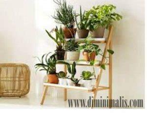 tanaman hias ruangan mempercantik interior