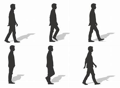 Walking Silhouette Walk Cycle Human Clipart Ms
