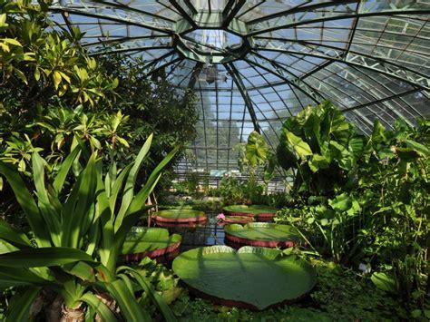 Kalthaus Botanischer Garten Basel by Le Jardin Botanique De L Universit 233 De B 226 Le Basel