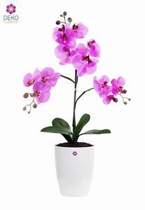 Künstliche Orchideen Im Topf : k nstliche orchidee pink im k bel 53 cm ~ Watch28wear.com Haus und Dekorationen