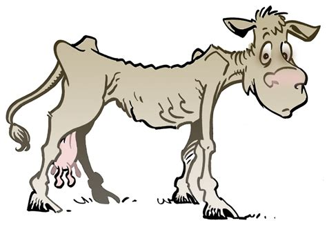 Thin Cow Cartoon