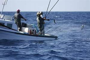 1000  Images About Tuna Fishing In The Azores On Pinterest