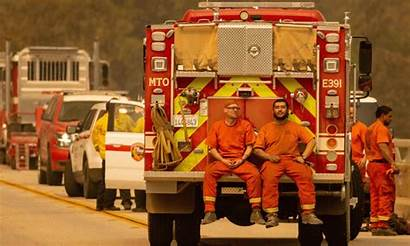 Firefighters Inmate California Inmates Fire Firefighter Wildfires