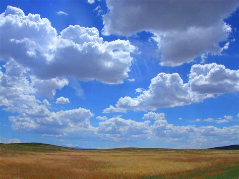 cloudy day stock photo freeimagescom