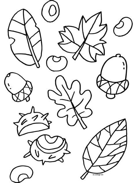 Kleurplaten Bladeren Bomen by Kleurplaat Herfst Blaadjes Nootjes Kleurplaten Nl