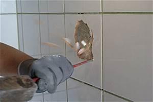 Einzelne Fliesen Austauschen : kaputte fliese austauschen mit einsatz von montagekleber anleitung und tipps vom ~ Watch28wear.com Haus und Dekorationen