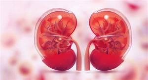 A Doctor Gives 4 Tips To Keep Your Kidneys Healthy