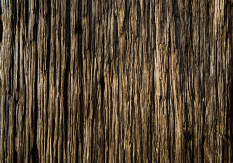 50 Seamless High Quality Wood Textures