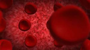 Blood Cell Inside Human Pulsing Vein Flow Obstruction
