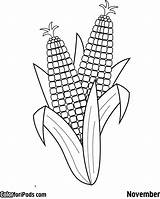 Corn Coloring Pages Printable Colouring Ear Ears Drawing Cob Template Preschool Aboriginal Crafts Sheet Sisters Three Squash Sheets Indian Milho sketch template