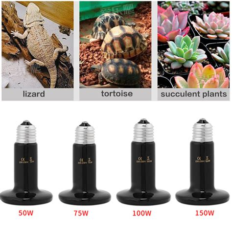 infrared heat l for plants 50 150w infrared ceramic heat emitter l bulb for